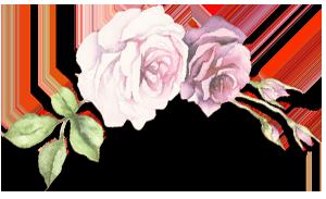 rose-trenner.png